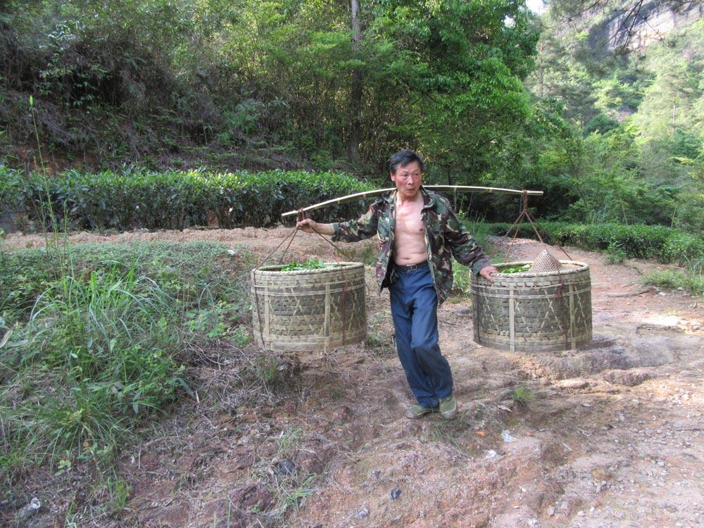 Wuyi - 100 kg na zádech